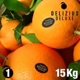 Oranges de Valence Navelines Deluxe 15 kg