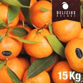 Mandarines de Valence Clemenules Deluxe 15 kg