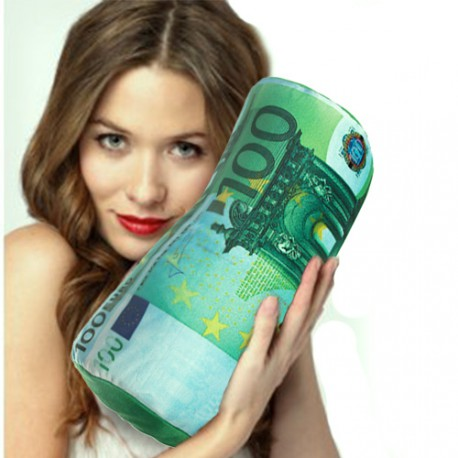 Oreiller Cervical Billet de 100 Euros